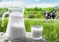 UNICAFES e FETRAF dos três estados do sul realizam reunião sobre a crise do setor leitero