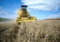 Brasil será o maior produtor de soja do planeta já em 2019, preveem EUA