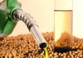 Combustível de soja vai bombar no posto de gasolina