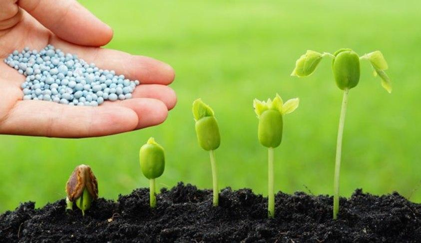 Plano de recuperação e conservação do solo