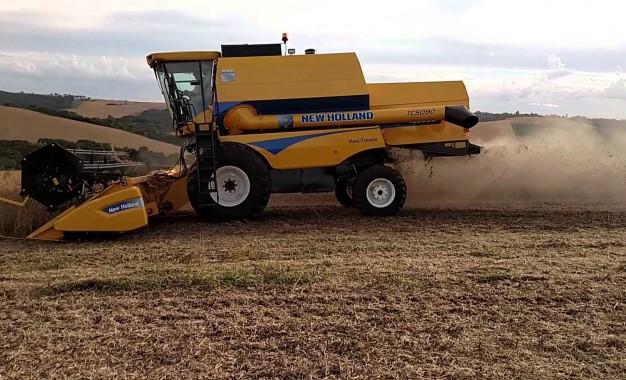 Brasil poderá colher até 238 milhões de toneladas de grãos na safra 2018/19