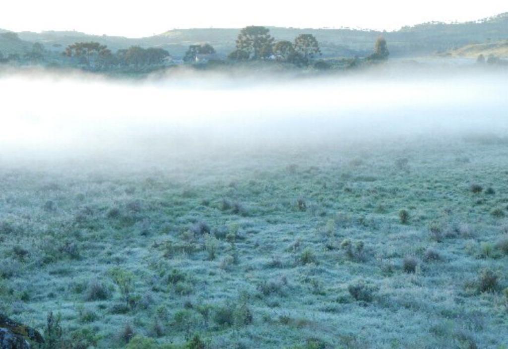 Frio intenso favorecerá formação de geadas no RS