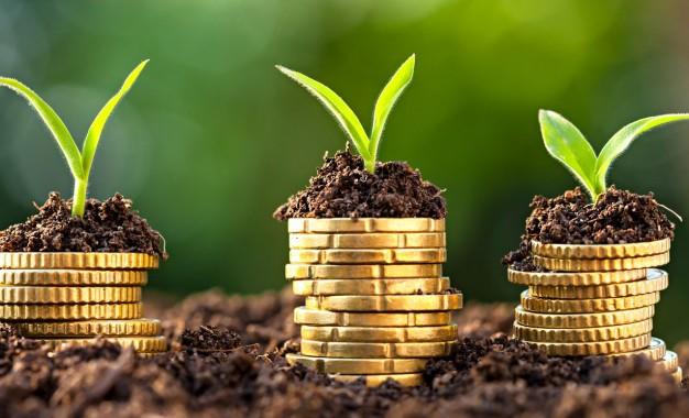 Valor anunciado para o Plano Agrícola e Pecuário é de R$ 194,3 bi