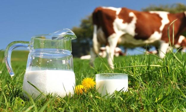 Cenário e perspectiva da atividade leiteira é discutido em Seminário