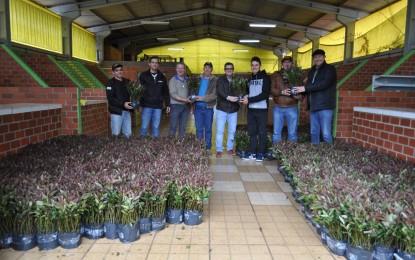 Três Passos: Programa municipal de florestamento beneficia produtores