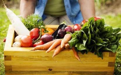 Pesquisa do Mapa mostra que vegetais comercializados no Brasil são seguros para consumo