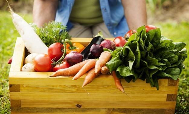 Agricultores familiares: decreto amplia participação em programas do governo