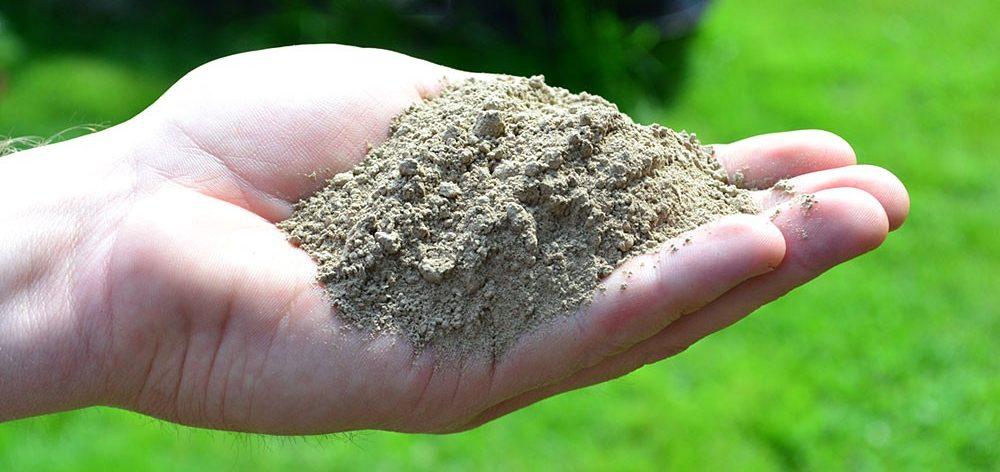 Pesquisa desenvolve fertilizante de baixo custo
