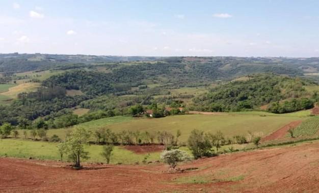 Área de reserva legal em propriedade rural poderá trazer mais beneficio ao produtor