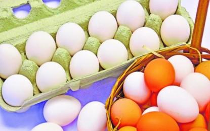 Consumo de ovo em 2018 será o maior da história