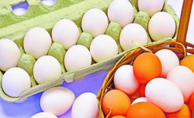 Tenente Portela apoia instalação de Entreposto de Ovos
