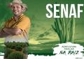 O selo da agricultura familiar beneficia mais de 200 mil agricultores familiares