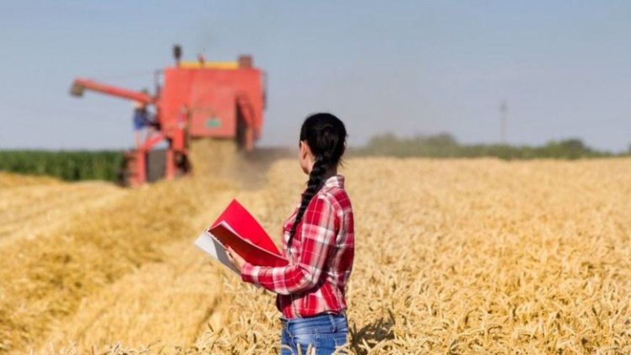 Contratação de crédito agropecuário tem alta de 13%