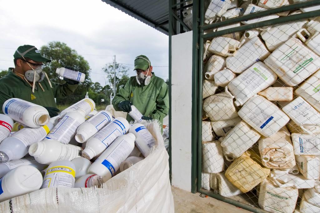 Brasil tira dos campos 500 mil toneladas de embalagens vazias de defensivos agrícolas