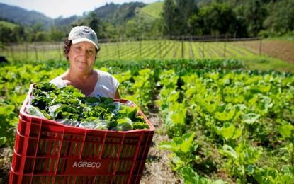 Norma busca agilizar o registro de fertilizantes orgânicos e de biofertilizantes