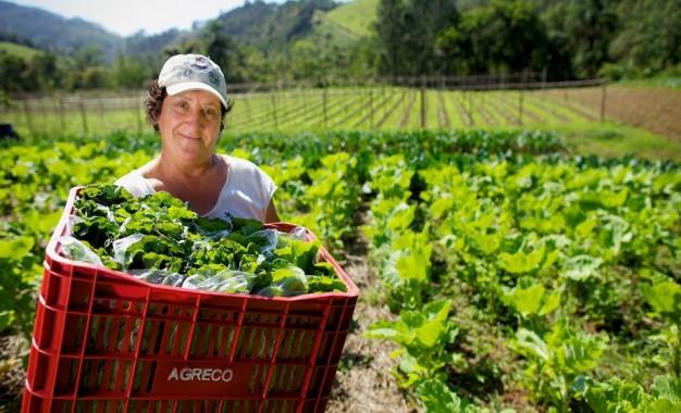 Cooperativas são importantes para mulheres do campo
