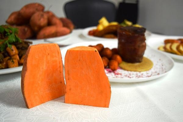 Batata-doce biofortificada tem boa aceitação como ingrediente para restaurante