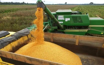 Chiapetta sediará a Abertura da Colheita do Milho 2020