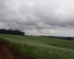 Tempo seco com chuvas isoladas é a previsão para a próxima semana