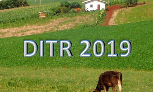 Veja Período Para Entrega da Declaração de ITR 2019