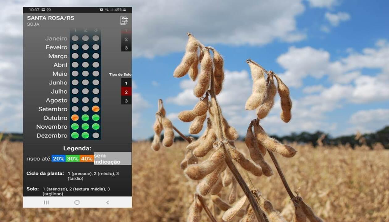 Aplicativo orienta a semeadura de verão