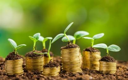 Governo anuncia liberação de orçamento recorde para o Programa de Seguro Rural em 2020