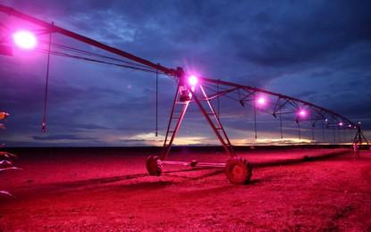 """""""Irrigação de luz"""" a campo eleva produção de soja em 57%"""