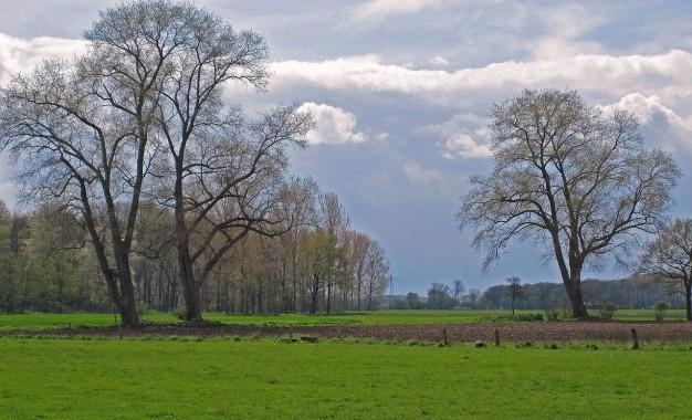 Boletim do Inmet traz previsão agroclimatológica de setembro a novembro deste ano