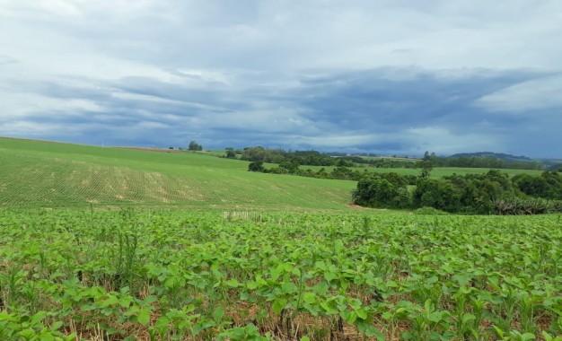 Registro de defensivos agrícolas de controle biológico chega a 76 e bate recorde em 2020
