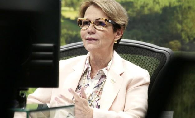 Agro brasileiro é boa alternativa para investimento em títulos verdes, diz ministra