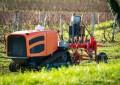 Lasers são nova arma no combate às ervas daninhas